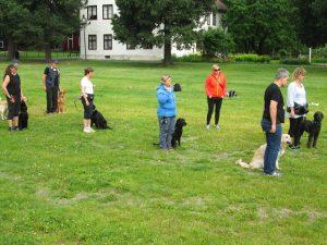 Bilde: Felles øvelse i parken